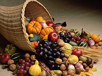 Bountiful-Harvest_sm