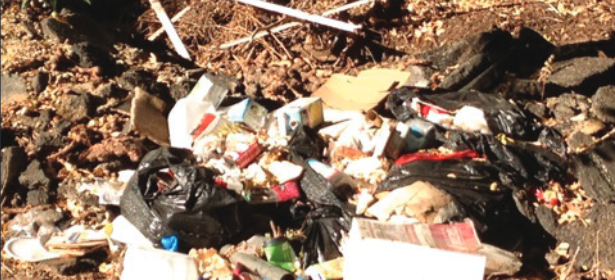 Illegal dumping templeton