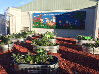 The little green thumbs garden where students plant a wide variety of vegetables and flowers.
