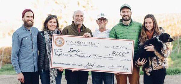 castoro-cellars-600x297