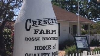 Rossi-Family-milk-bottle-450x600