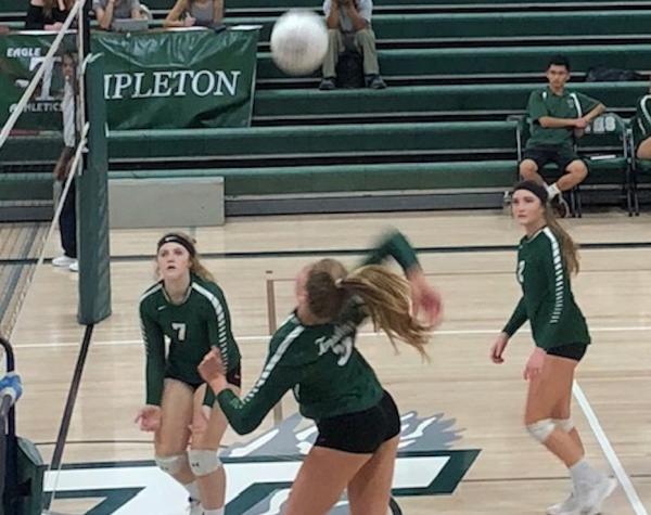 Templeton girls volleyball beats Bullard