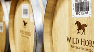 Wildhorse Winery sold