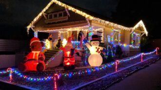 Vine Street Victorian Christmas Showcase